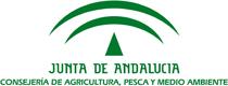 E- JUNTA DE ANDALUCIA